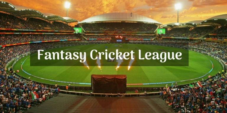 How do people earn by fantasy cricket leagues? 3