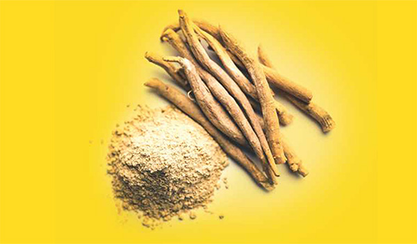 How Ayurveda helps to combat issues of our immune system