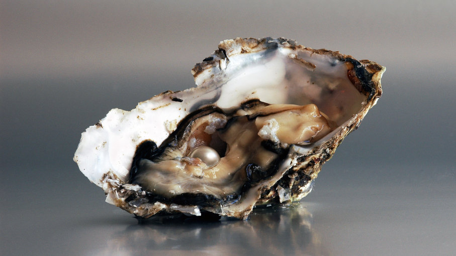 How a Pearl Is Made Inside an Oyster