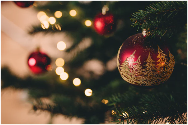 5 Things You Should Know About Christmas Trees 1