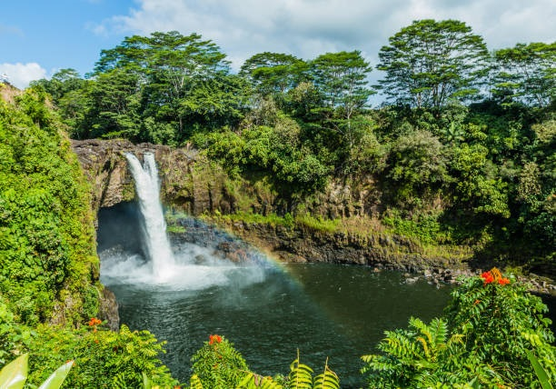 Travel Guide to Hilo